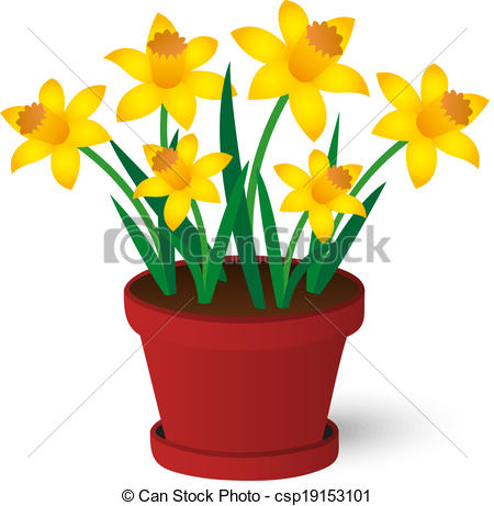 Daffodils Illustrations and Clip Art. 1,965 Daffodils royalty free.