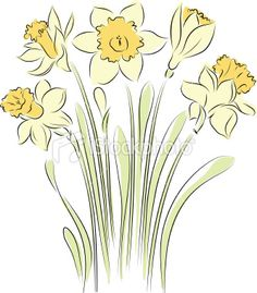 Daffodils flower clipart.
