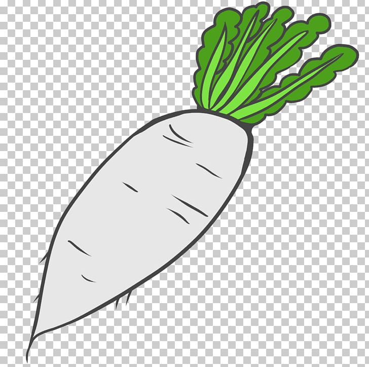 Vegetable Drawing Daikon PNG, Clipart, Daikon, Download.
