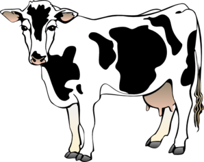 Dairy cows clipart.