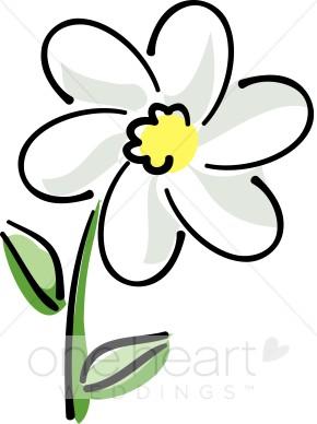 White Daisy Clipart.