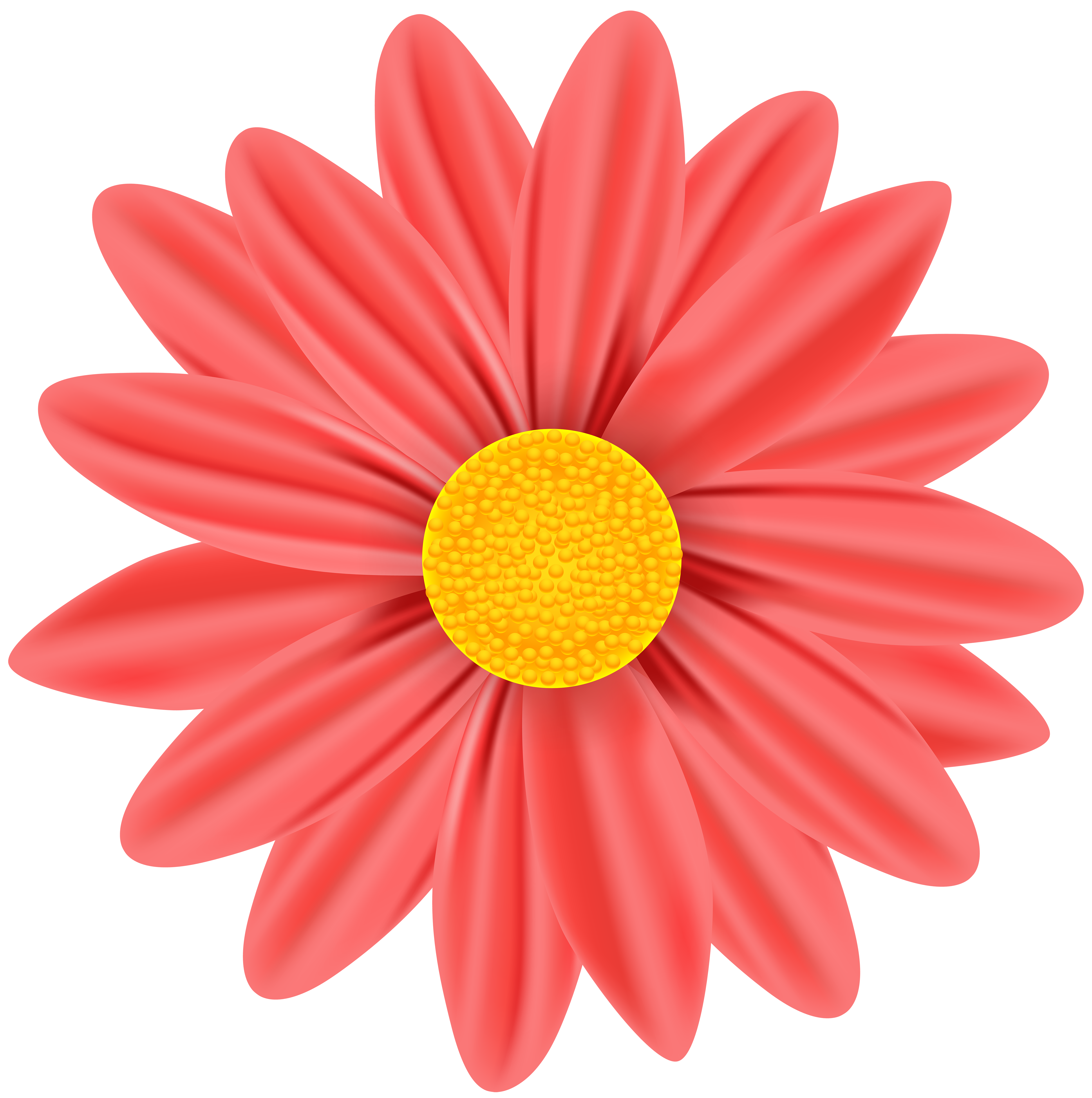 Red Daisy PNG Clip Art Image.