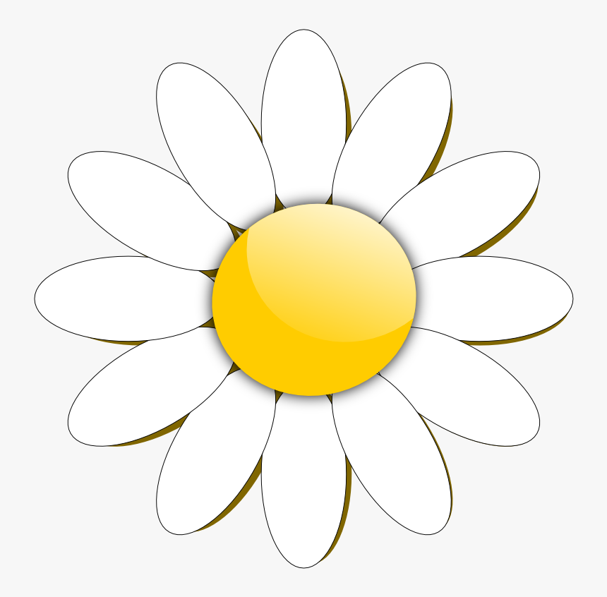 Transparent Daisy Clipart Png.