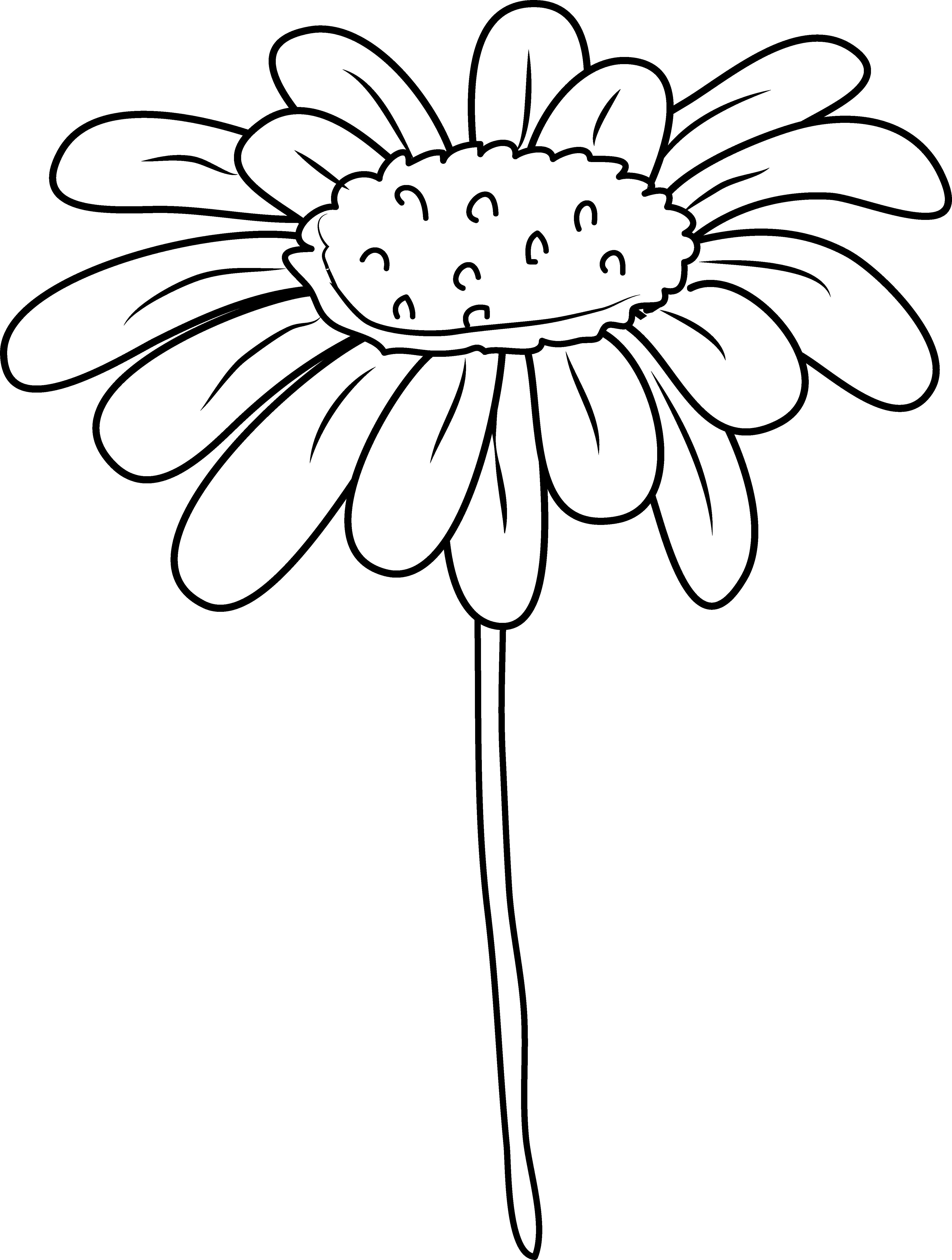 daisy flower clipart #6.