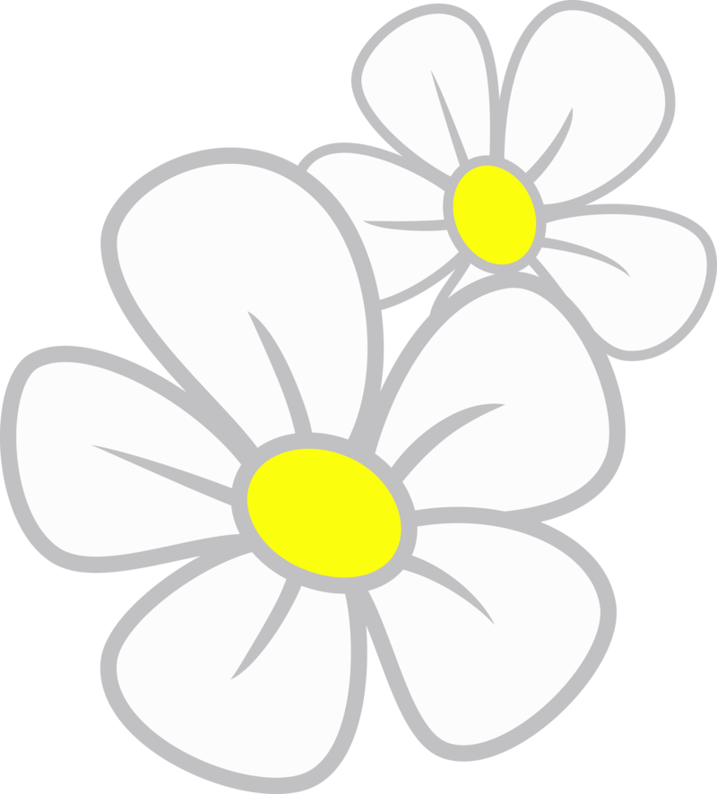 Daisy Images.