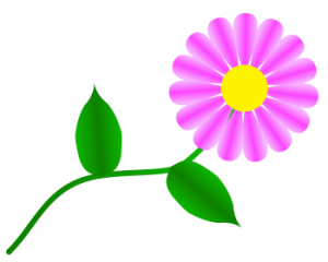 Daisy Like Pink Clip Art Download.