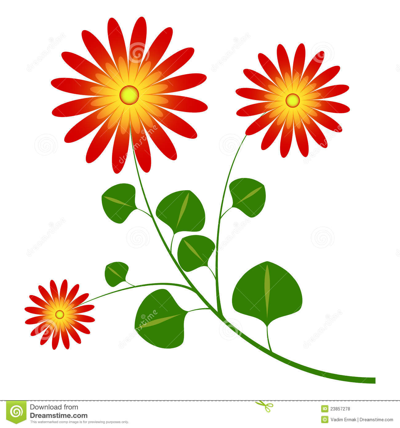 Flower Daisy Like Royalty Free Stock Photos.