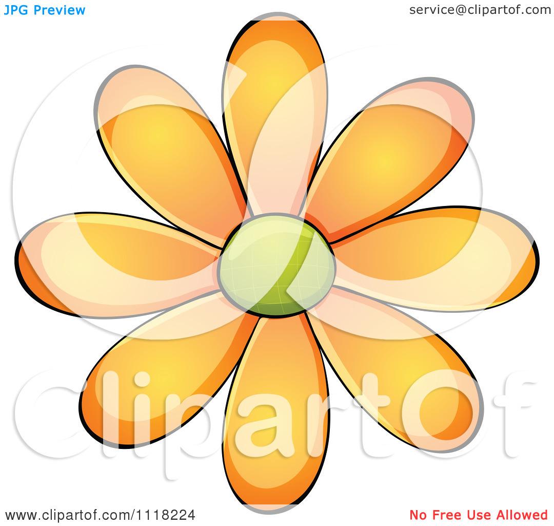 daisy flower clipart #9.
