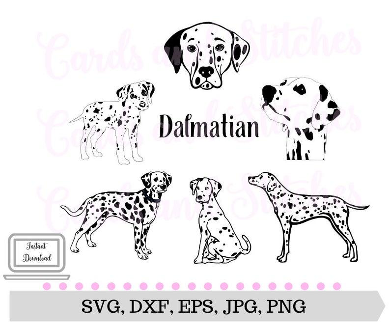 Dalmatian SVG.