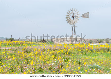 Agriculture Landscape Stock Photos, Royalty.