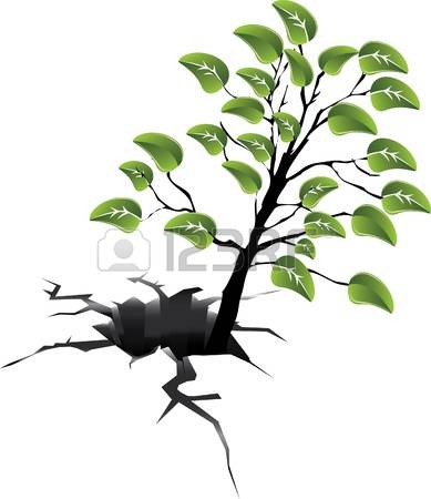 484 Forest Damage Stock Vector Illustration And Royalty Free.
