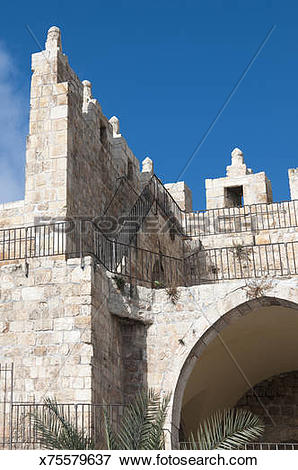 Picture of Old City wall near Damascus Gate x75579637.