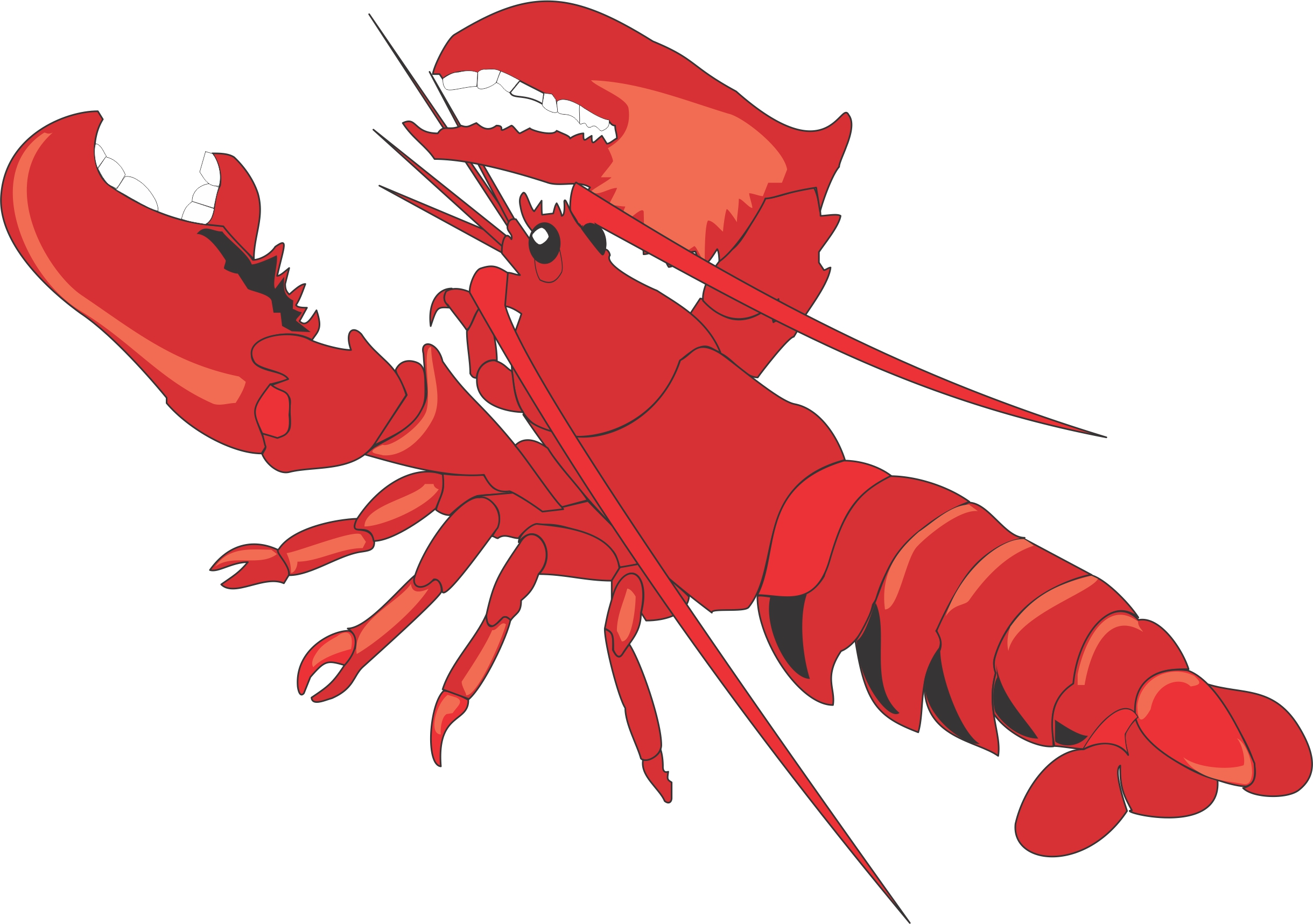 Lobster clipart lobster clip clipart cliparts for you.