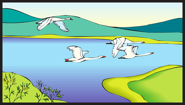 Free vector graphic: Landscape, Birds, White, Flying.