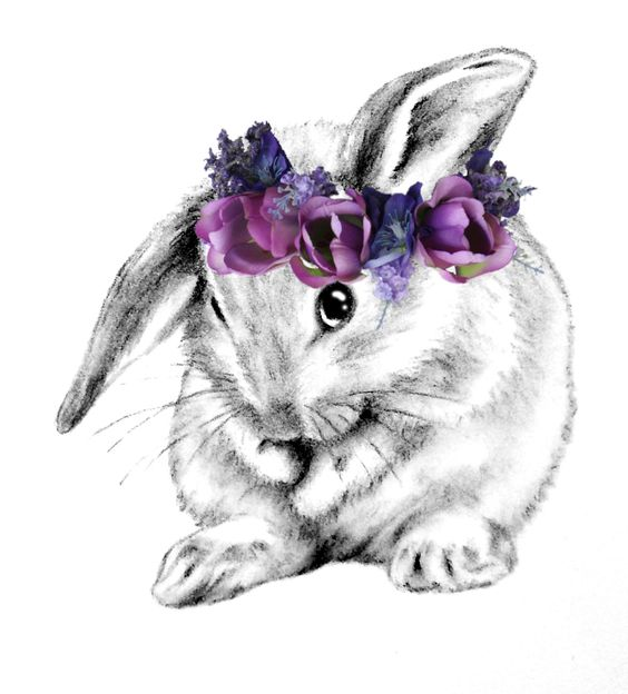 Floppy ear bunny with flower crown.
