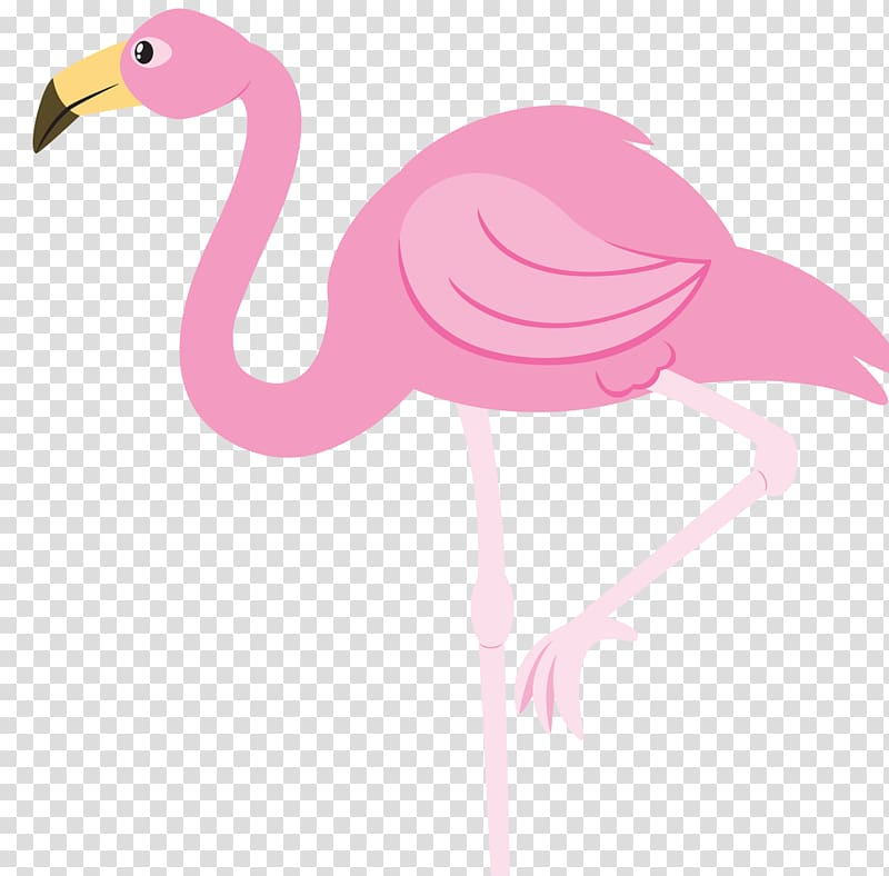 Pink flamingo illustration, Flamingo , flamingos transparent.