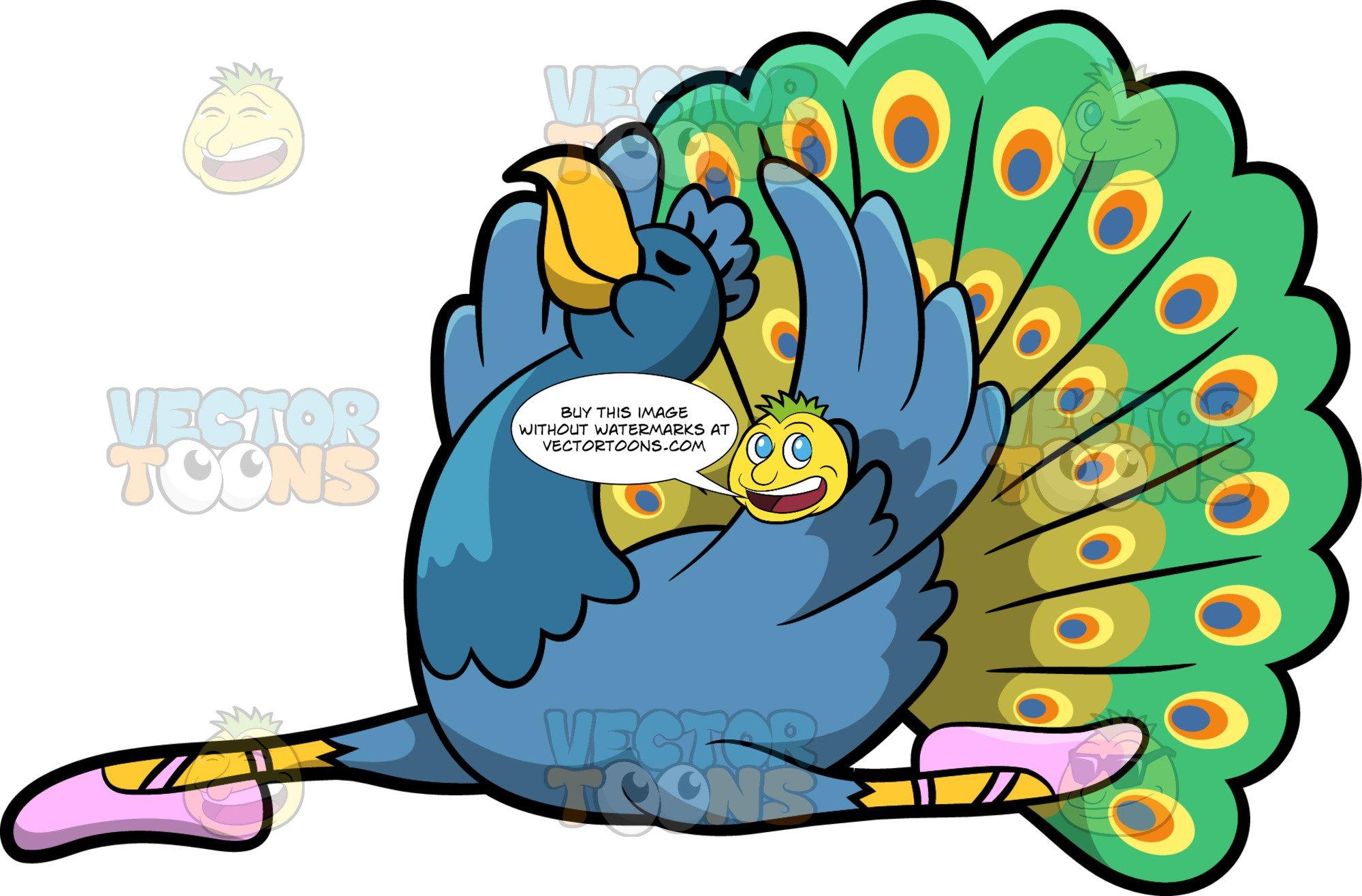 A Dancing Peacock.