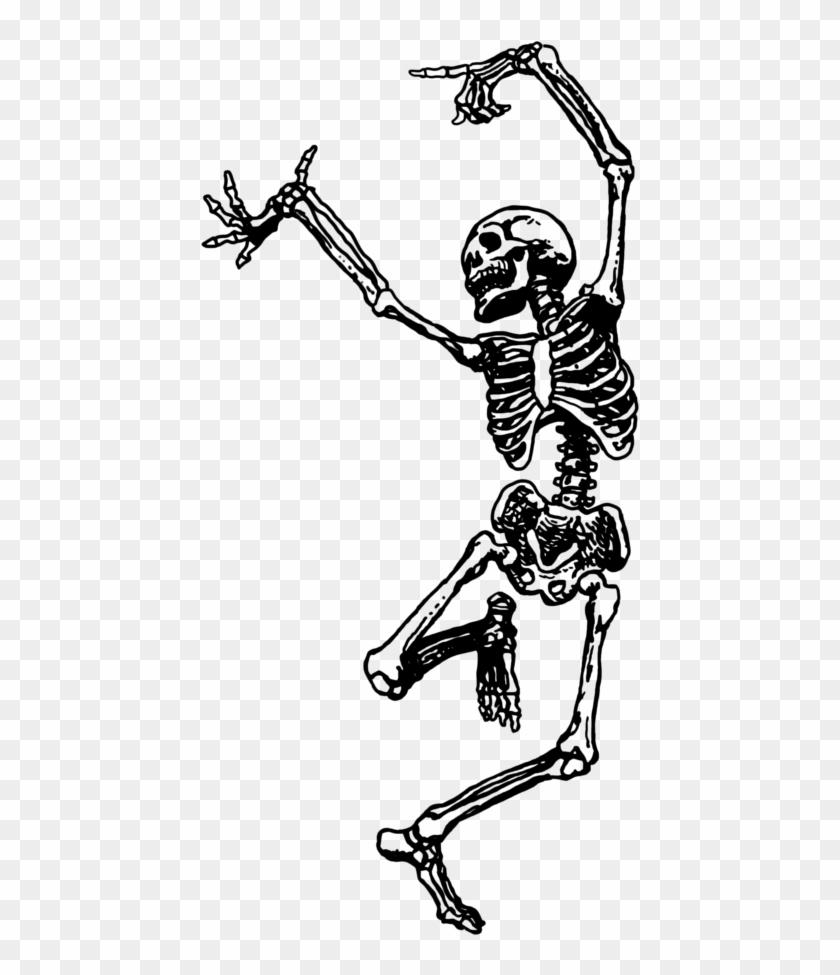 Skeleton Png Tumblr.