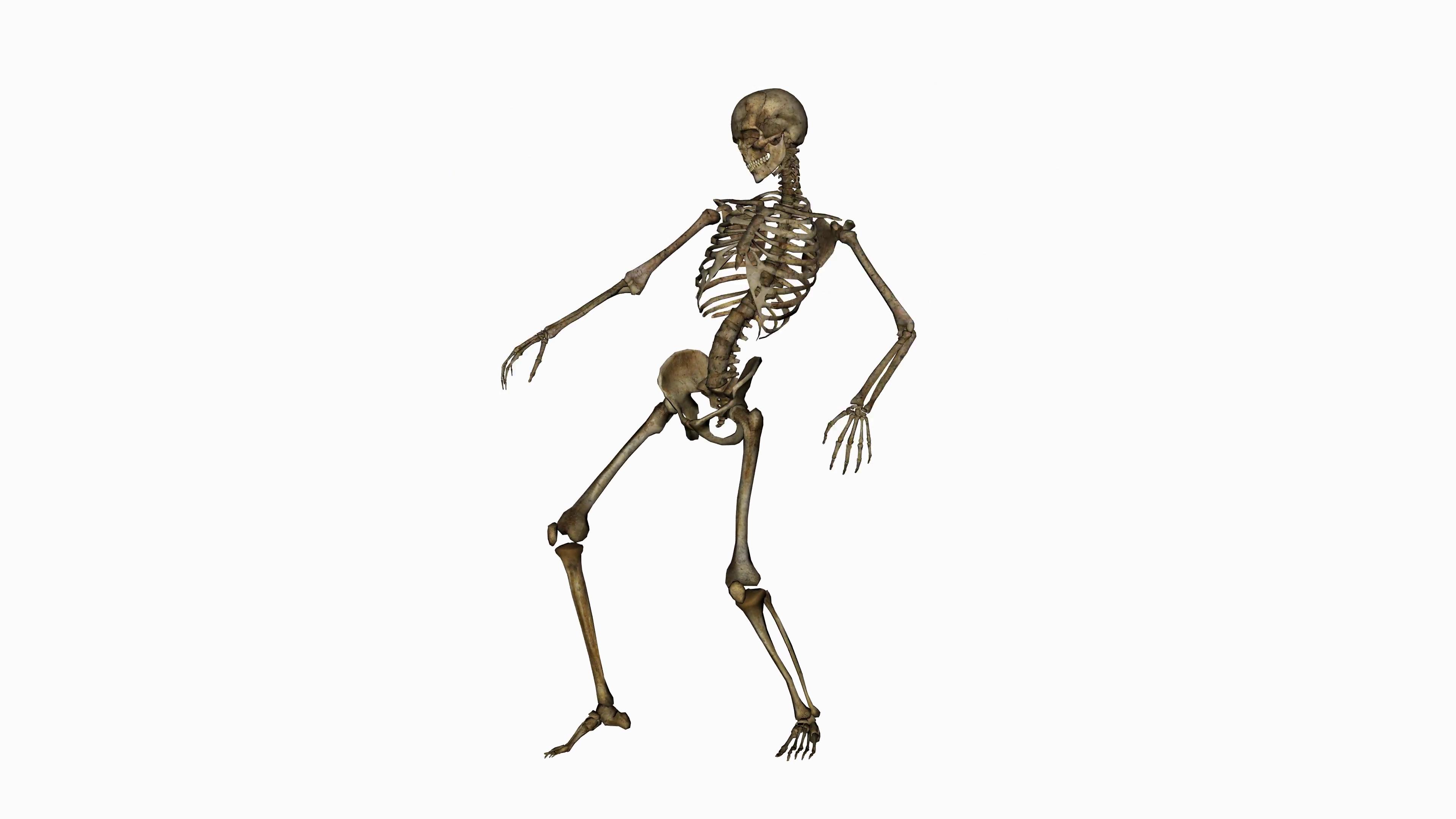 Skeleton Funny Dance, alpha channel.