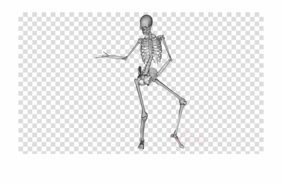 Dancing Skeleton Png Clipart Skeleton Dance.