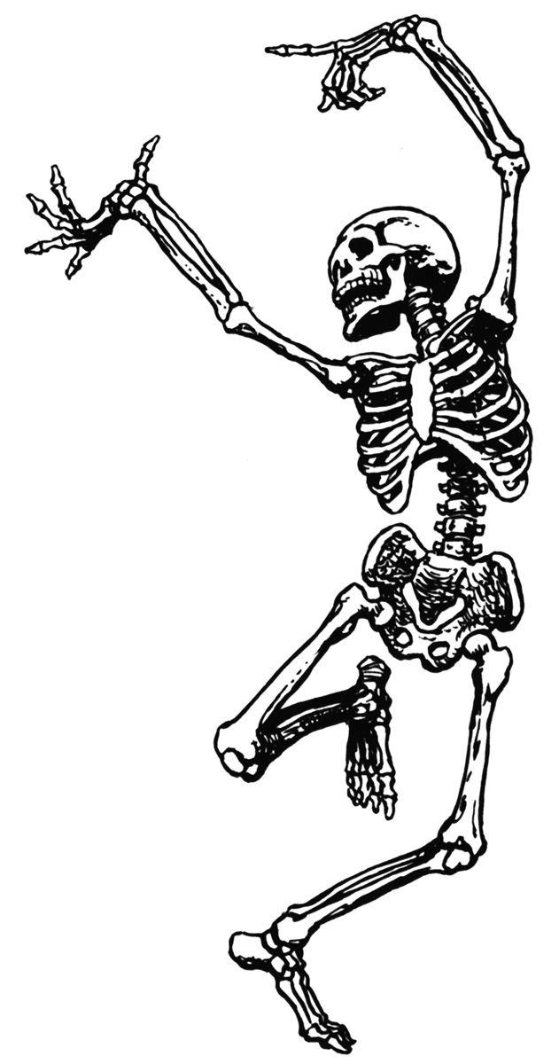 clip art walking skeletons.