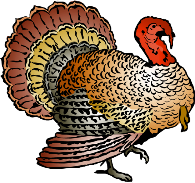 Turkey free thanksgiving clipart.