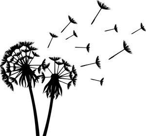 Details about Dandelion Blowing Decal Window Bumper Sticker Car Decor  Flower Dandelions Wind.