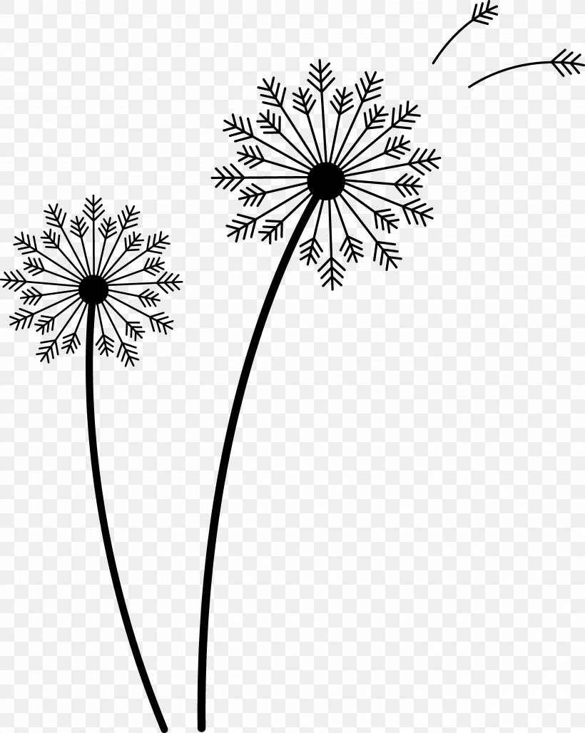 Drawing Common Dandelion Clip Art, PNG, 5388x6759px, Drawing.