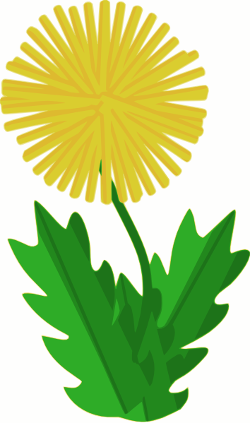 Dandelion clip art Free Vector / 4Vector.