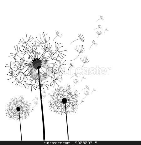 Hand drawn dandelion isolated stock vector.