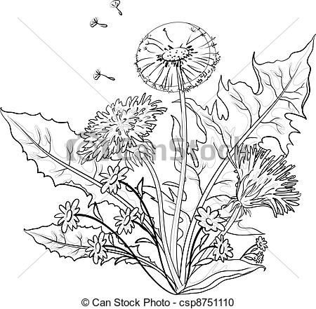 Vector Clipart of Flowers dandelions with leaves, contours.