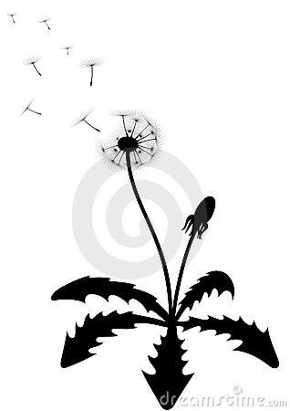 Leaves Of Dandelion Royalty Free Stock Image.