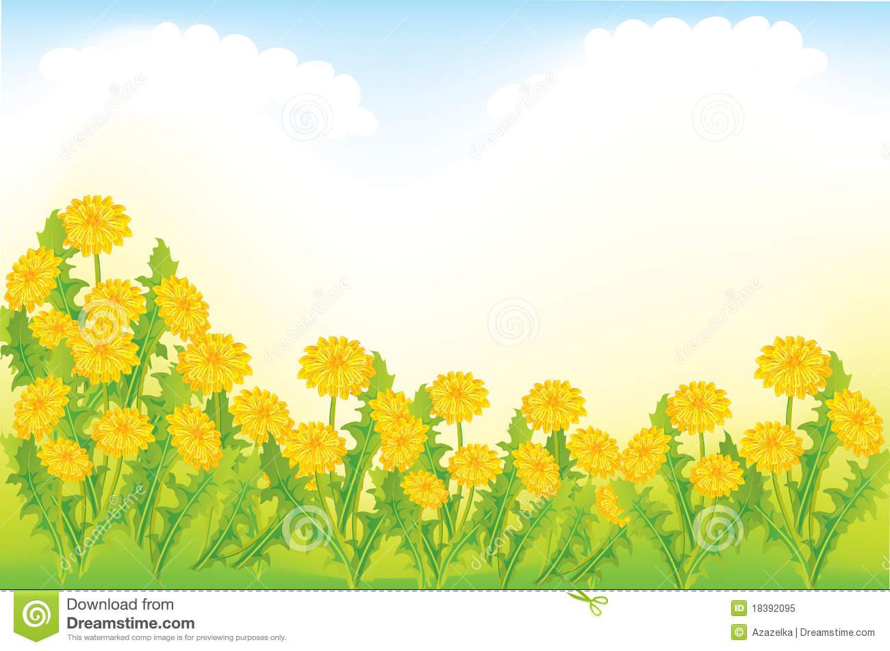 Dandelion Meadow Royalty Free Stock Photo.