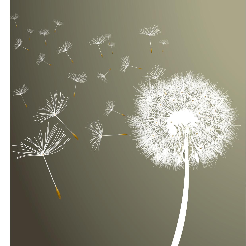 Dandelion Download Transparent PNG Image.
