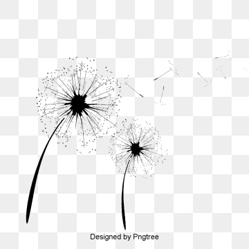 Dandelion PNG Images, Download 463 PNG Resources with Transparent.