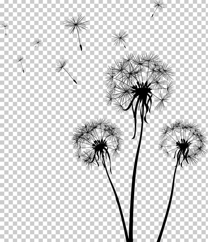 Drawing Dandelion PNG, Clipart, Art, Black, Black And , Computer.