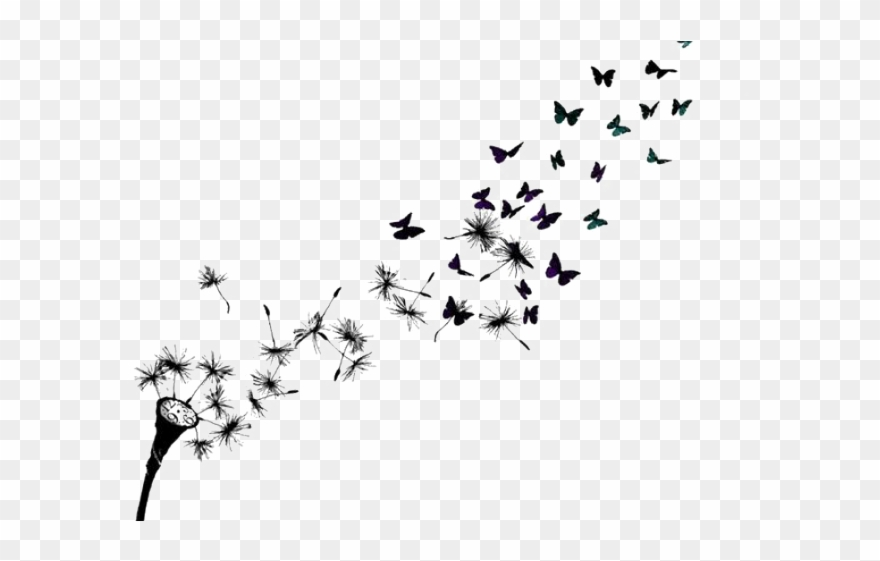 Drawn Dandelion Bird.