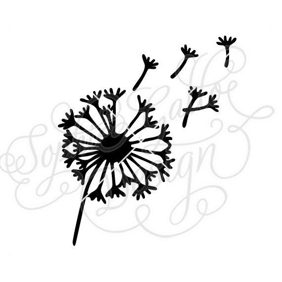 Blowing Dandelion Drawing.