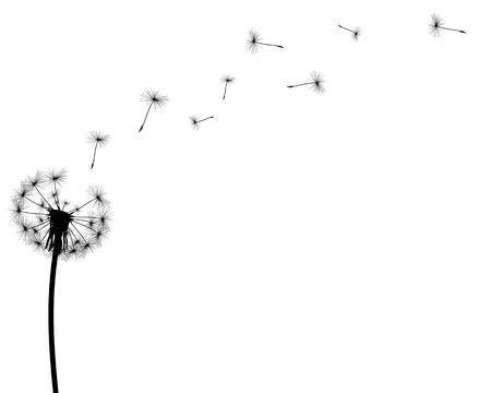 3,803 Dandelion Silhouette Stock Illustrations, Cliparts And Royalty.