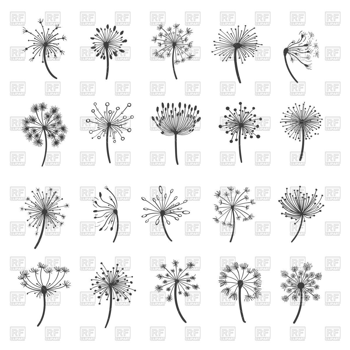Dandelion silhouettes Stock Vector Image.