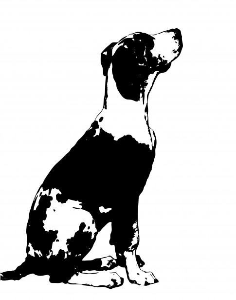 Dog Clipart Great Dane Free Stock Photo.