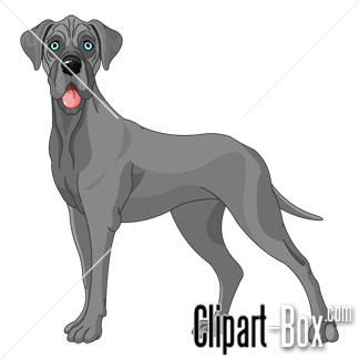 CLIPART GREY GREAT DANE DOG.