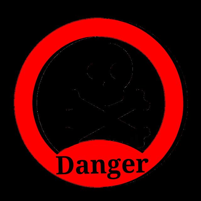 Danger Skull Vector.