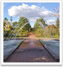 1000+ ideas about Botanical Gardens Hours on Pinterest.