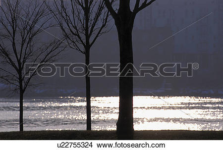 Stock Photo of Danube Island, block of flats, Danube, condolement.