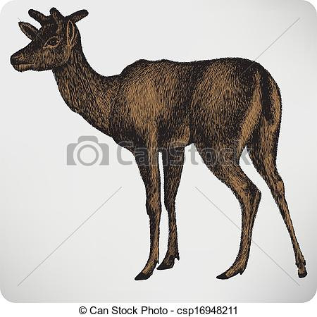 Vector Clip Art of Animal dappled deer with horns, hand.