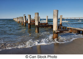Stock Photo of Baltic Sea coast of Darss in Germany csp16570646.