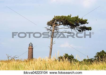Stock Photo of Darsser Ort lighthouse behind a wind.