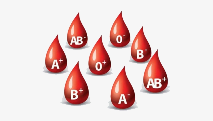 Importance Of Blood Donation.