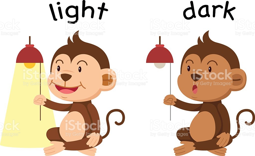 Opposite Words Light And Dark Vector stock vector art 528043046.